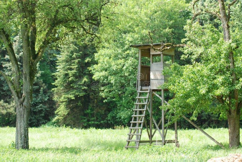 Deerstand обозревая поле в черном лесе стоковое изображение rf