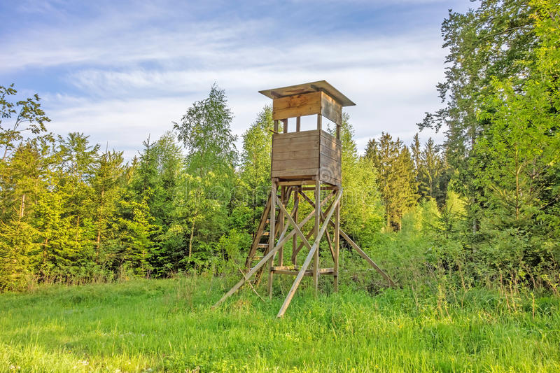Deerstand w lesie obrazy royalty free