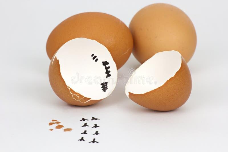 Defekte Eierschale auf wei?em Hintergrund mit cipping Weg lizenzfreie stockfotografie