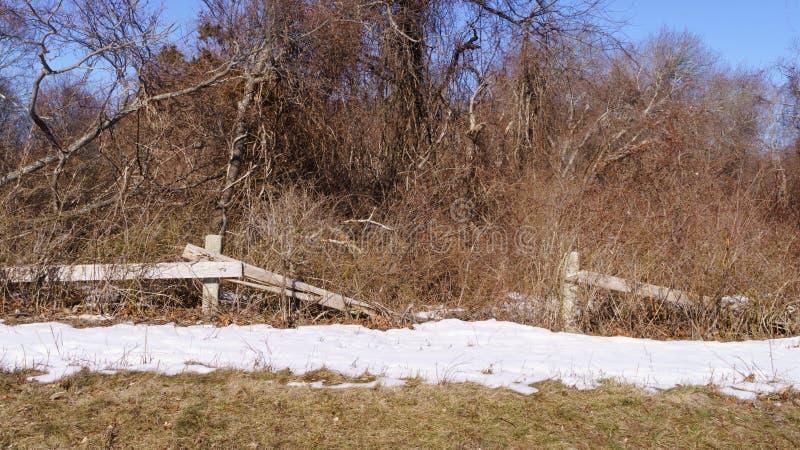 Defekter Bretterzaun vor Bäumen mit Schnee aus den Grund lizenzfreie stockfotografie