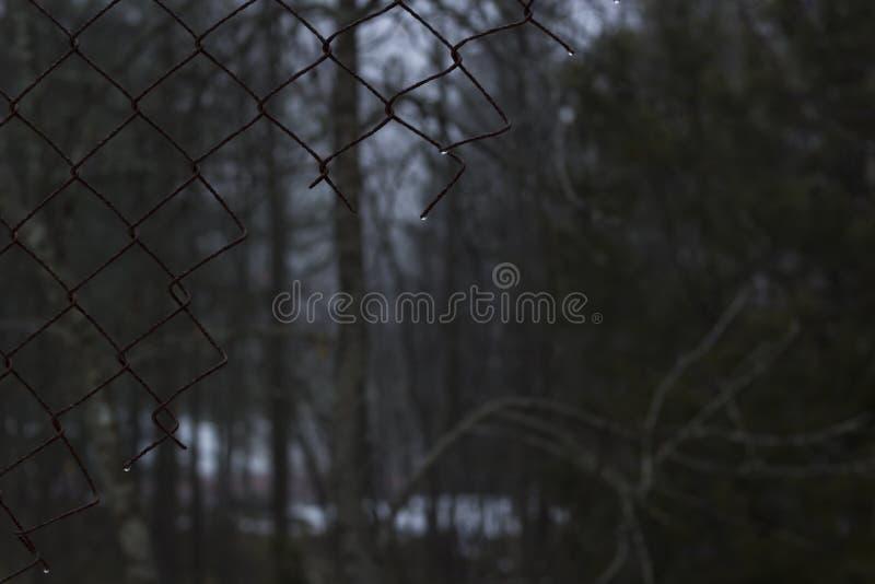 Defekter rostiger Zaun mitten in einem schwedischen Wald an einem nebelhaften Tag stockbild