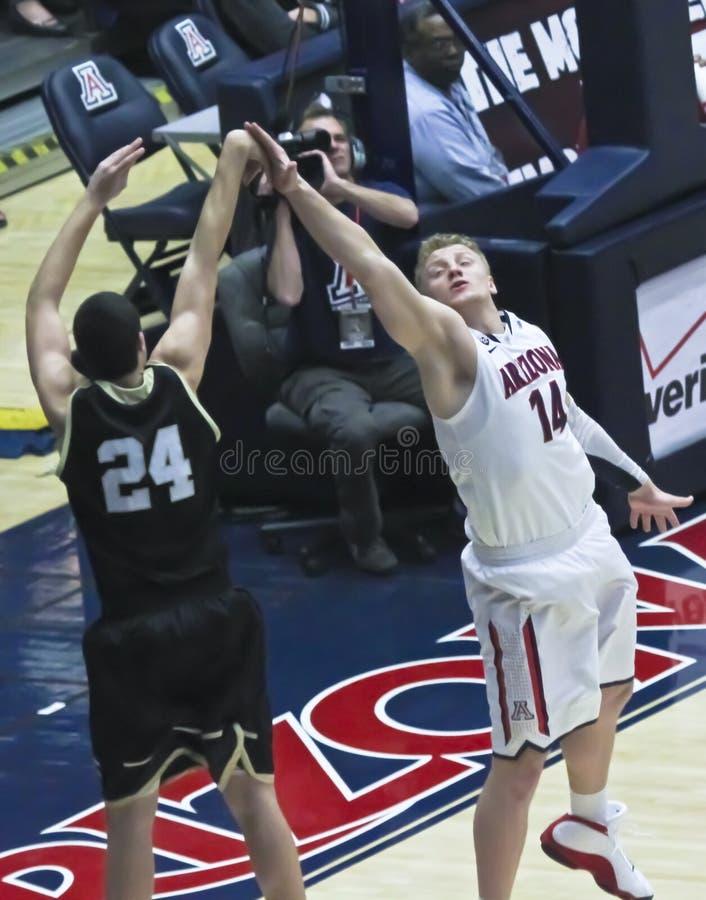 University Of Arizona Wildcats Mens Basketball Tucson | Basketball Scores