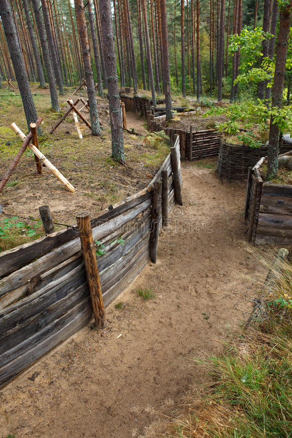 Defensive Trench In Forest Stock Photography