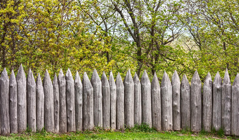 Defensive wooden palisade stockade. From sharpened logs on the background of trees stock image