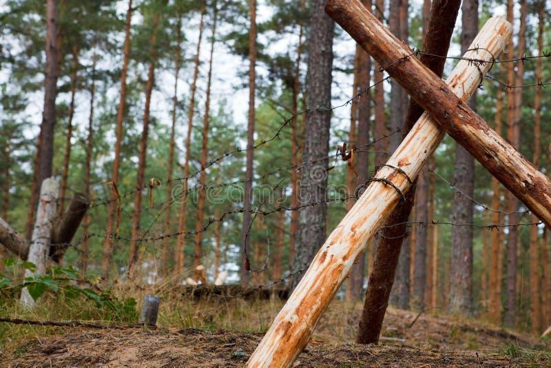 Defensiver Graben im Wald stockfotos