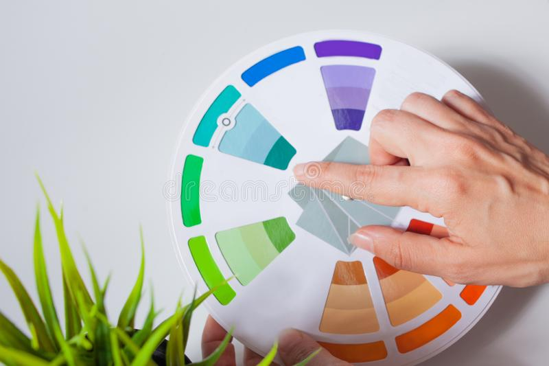 Define your color type. Female hands with neat, concise manicure rotate the color wheel. The color circle lies on a white background, next to a green plant stock images