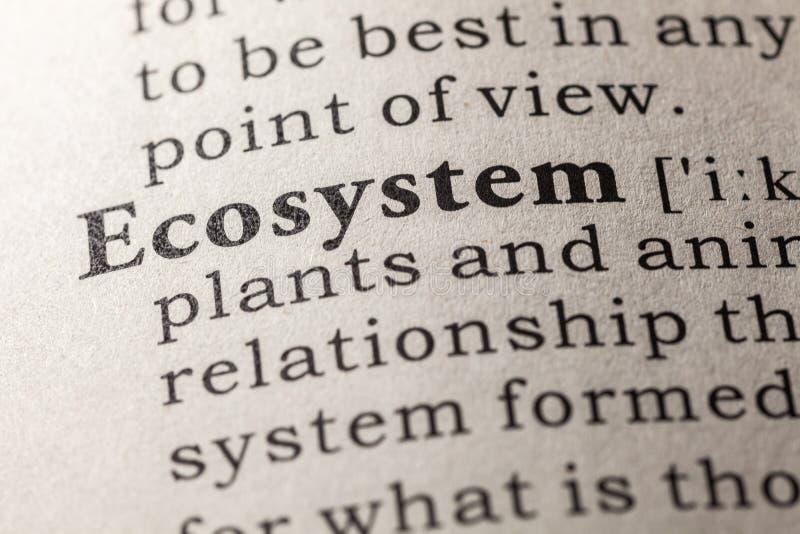Definición del ecosistema de la palabra foto de archivo libre de regalías