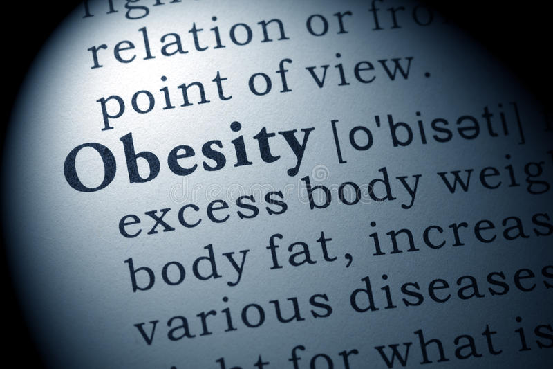 Definition of obesity. Fake Dictionary, Dictionary definition of the word obesity royalty free stock photo