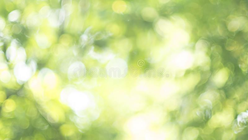 Defocus-Natur bokeh lizenzfreie stockfotografie