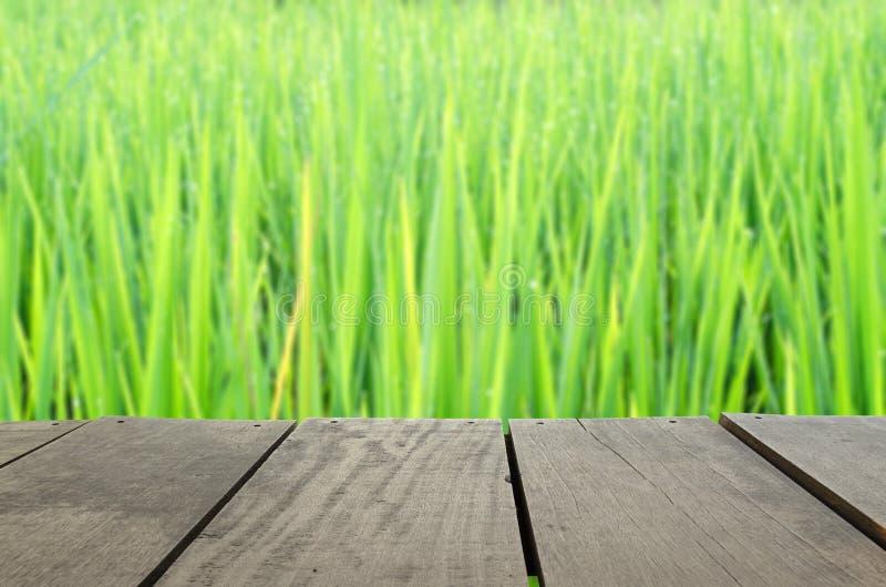 Defocus und Unschärfebild des Terrassenholzes und des schönen ungeschälten Reises stockbild