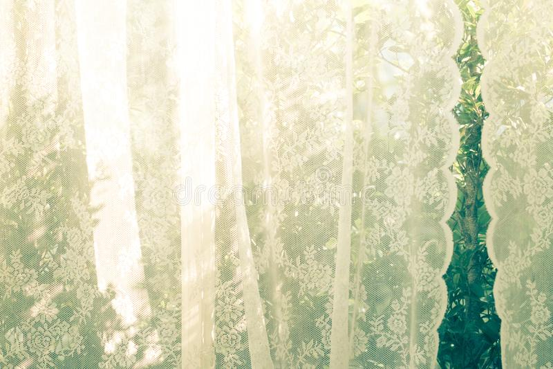 Defocused帷幕窗口阳光通过格子帷幕在春天夏天的早晨 绿色自然庭院背景 新鲜 节假日 免版税库存图片