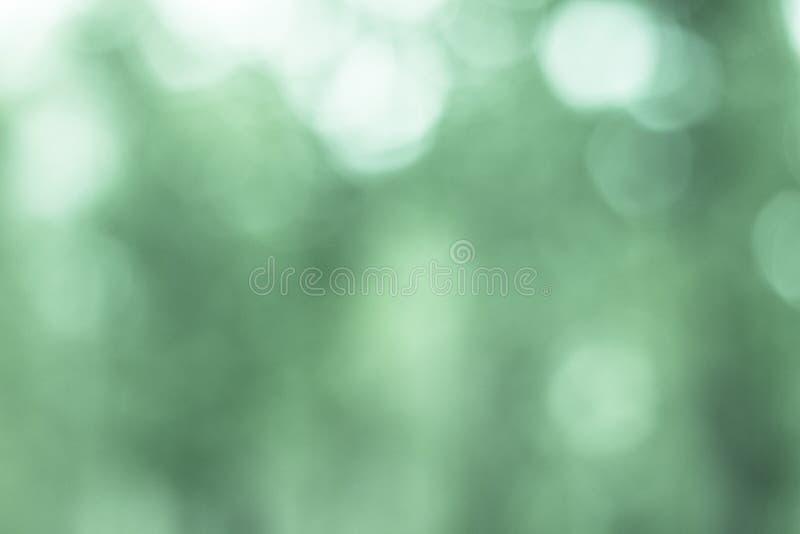 Defocused ljusbakgrundsgräsplan royaltyfri foto