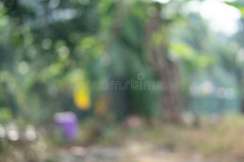 Defocused, unscharfes Bild von grünen Blättern, Natur, Kopienraum, abstrakt stockfotografie