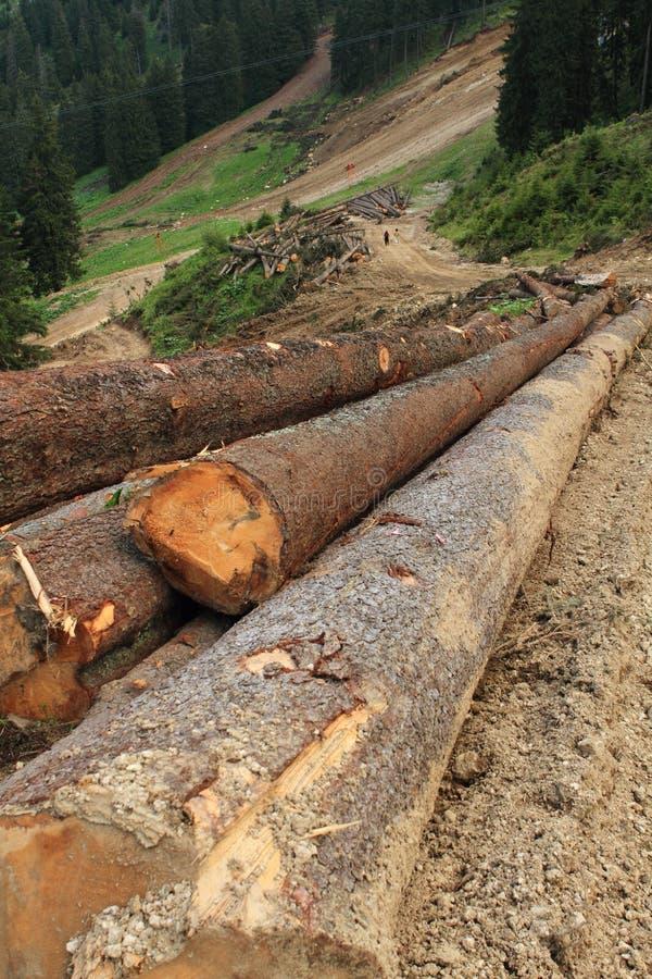 Download Deforestation stock image. Image of deforestation, pile - 19826877