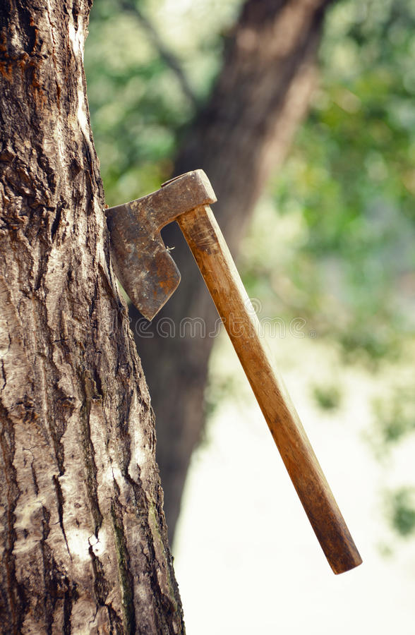Download Deforestation Royalty Free Stock Photo - Image: 26019085