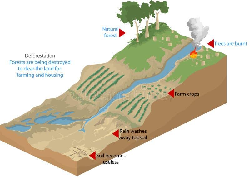 deforestation ilustração do vetor