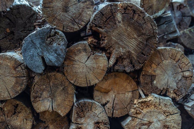 deforestation Cayó el árbol Fondo de madera de la textura o de madera Vieja textura de madera natural marrón Fondo de madera del  imagen de archivo
