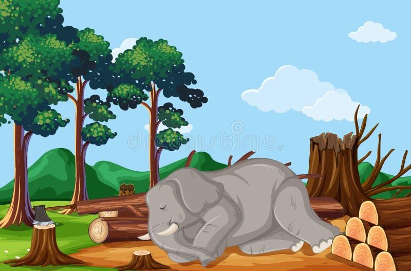 Deforestation scene with elephant dying stock illustration