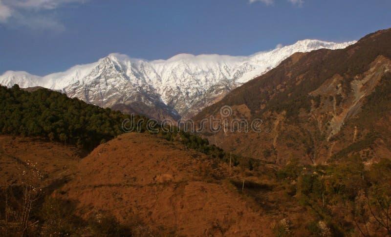 deforestationhimalayas india maximal snow arkivbilder