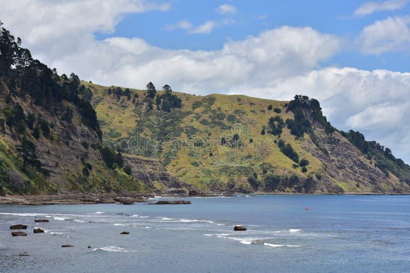 Deforested kustklippen stock afbeeldingen