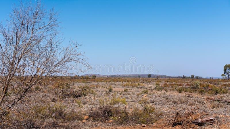 Deforestedland in Australië stock foto's