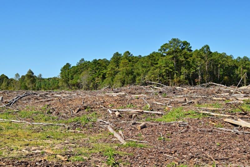 Deforestedland door machines wordt ontruimd die royalty-vrije stock foto's