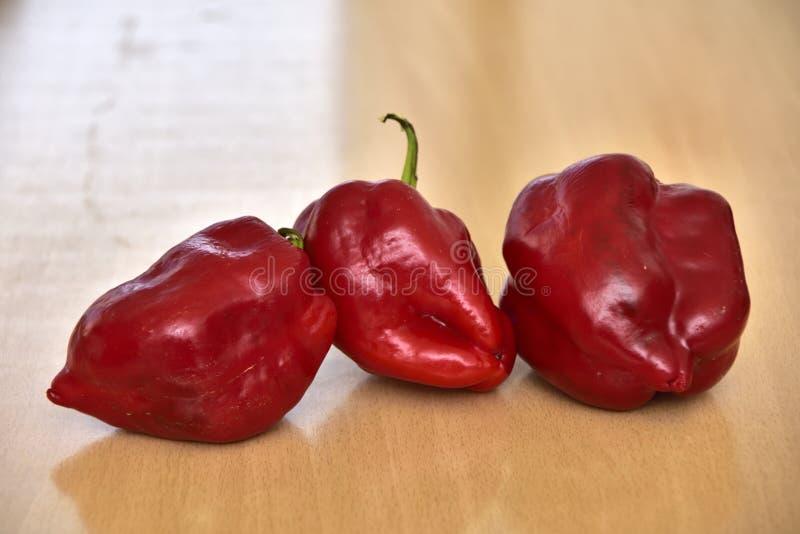 Deformed homegrown Bell Pepper, Paprika, Pepper, Food, Vegetable, royalty free stock photos