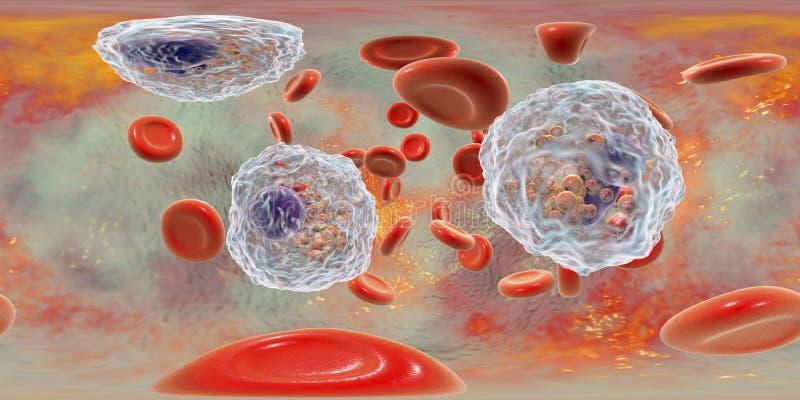 360-degree ba?czasta panorama krew z eosinophilia zdjęcie stock