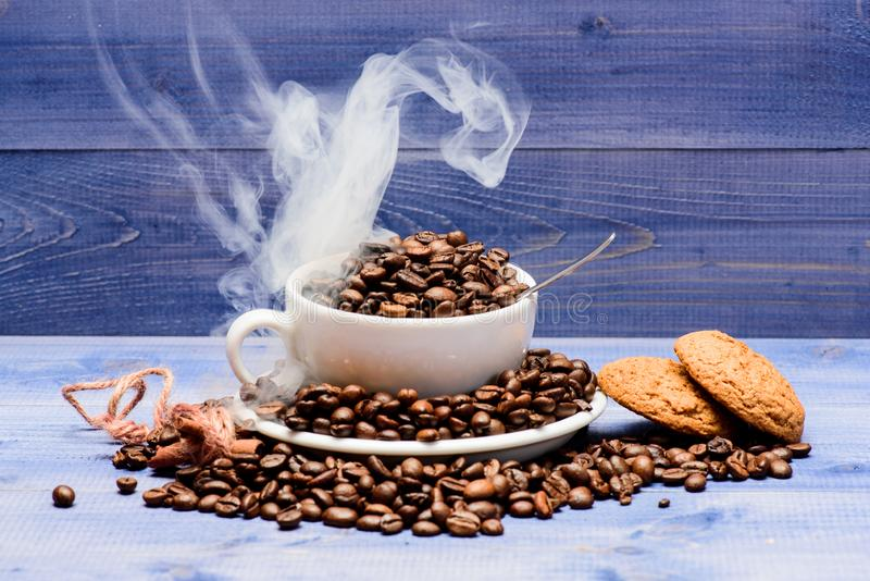 Degree of roasting grain. Cafe drinks menu. Fresh roasted coffee beans. Coffee for inspiration and energy charge. Cup royalty free stock image