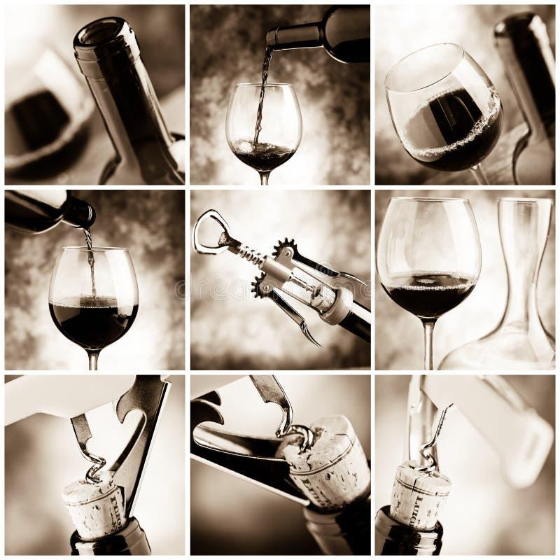 Degustação de vinhos imagens de stock royalty free