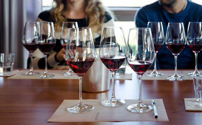 Degustación de vinos en Langhe Italia fotografía de archivo