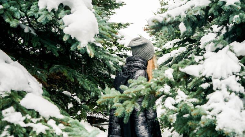 Dehors portrait de belle fille marchant par la forêt impeccable neigeuse Le dos apprécier l'hiver images libres de droits