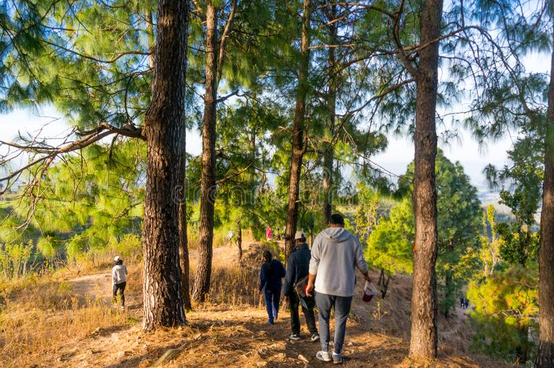People hiking in the woods near dehradun india. Dehradun, India - 10th Mar 2018: People hiking on a mountaintop with trees all around in Dehradun india asia. The stock image
