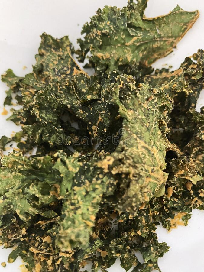Dehydrated Baked Kale Chips stock image