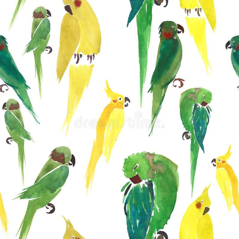 Dei pappagalli gialli della bella giungla sveglia luminosa acquerello casuale adorabile del modello e verdi royalty illustrazione gratis