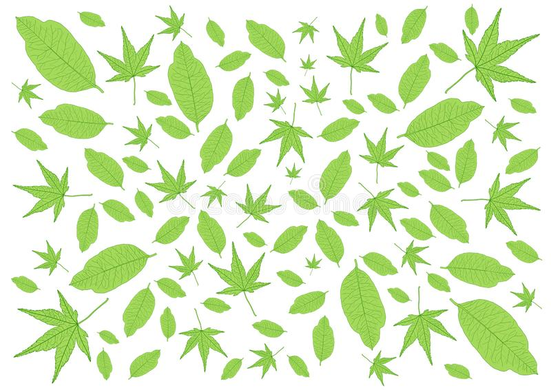 Deja el modelo verde y muchas las hojas frescos fotografía de archivo