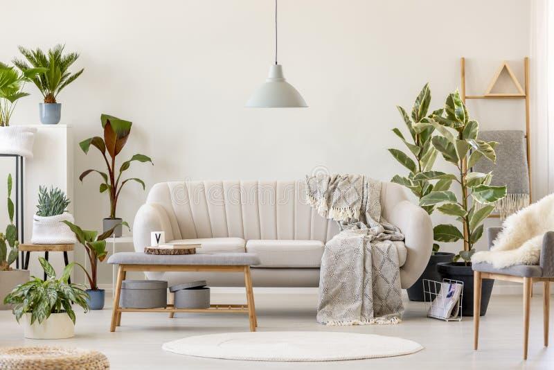 Deken op beige sofa onder grijze lamp in bloemenwoonkamer binnen royalty-vrije stock foto's