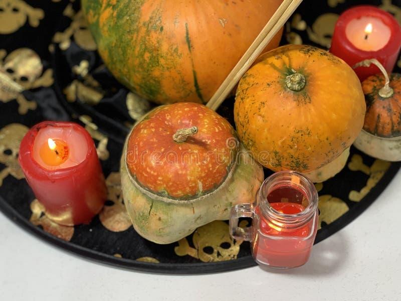 Dekor för Halloween semester royaltyfria bilder