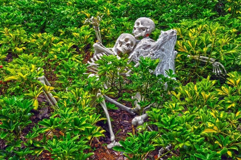 dekoraci Halloween koścowie obrazy royalty free