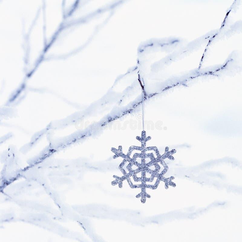 Dekoracja bożonarodzeniowa wisząca z mrożonych gałęzi z białym tłem śniegu Święto zimowe zdjęcie royalty free