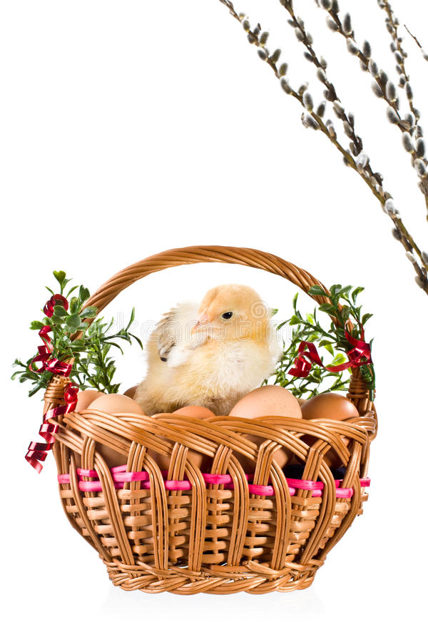 Download Dekoracja Easter obraz stock. Obraz złożonej z karmazynka - 13325375