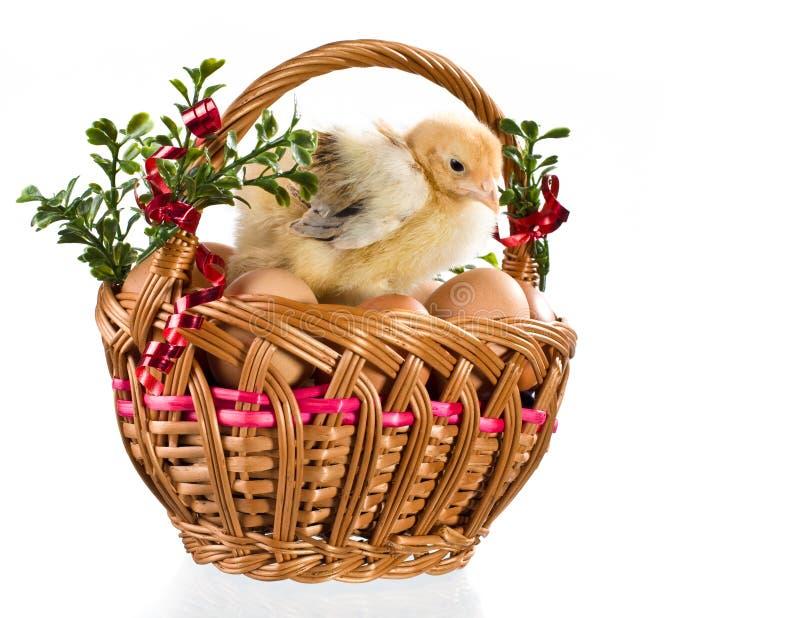 Download Dekoracja Easter zdjęcie stock. Obraz złożonej z belfer - 13325398