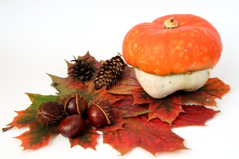 dekoracja jesienią obrazy stock