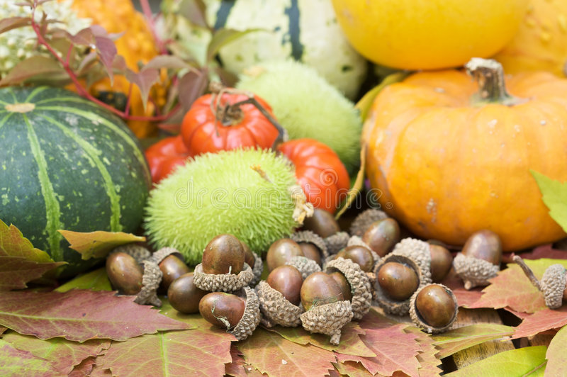dekoracja jesienią obraz royalty free