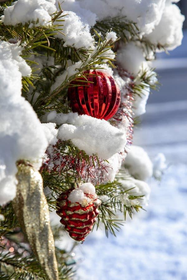 Dekoracje bożonarodzeniowego drzewa zimowego zdjęcia royalty free