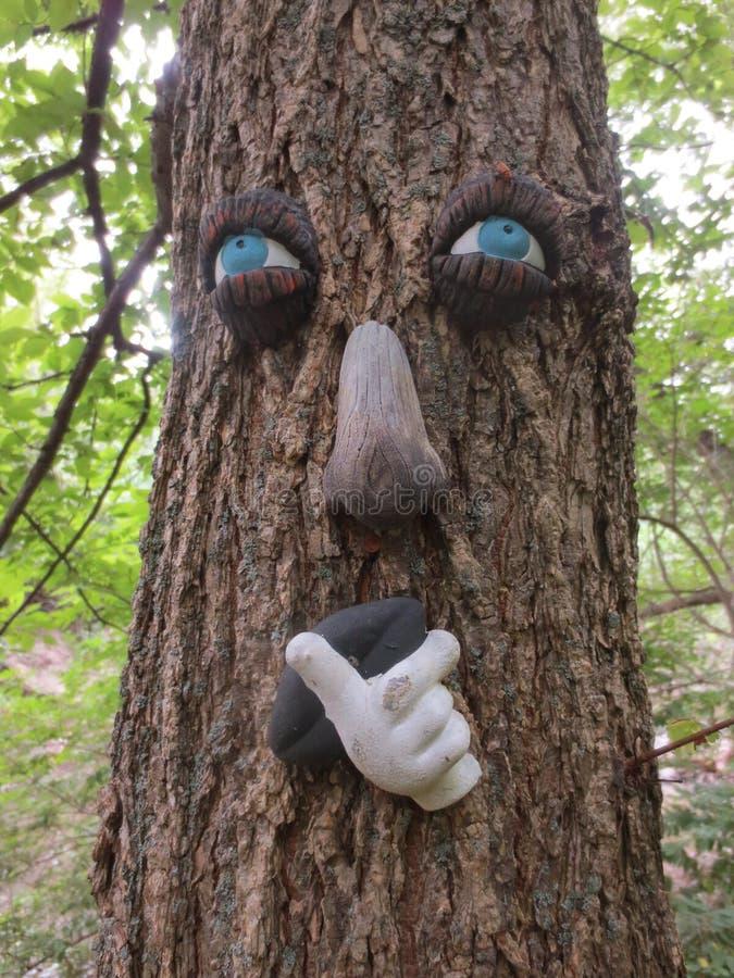 Dekoracyjna Drzewna twarz w lesie zdjęcia royalty free