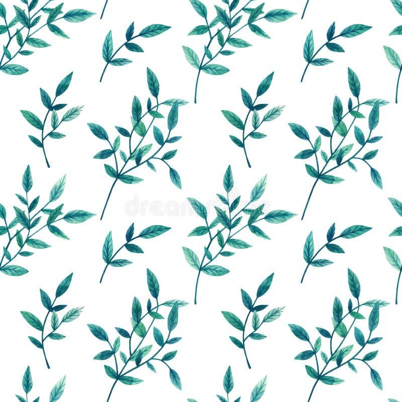 Dekoracyjna zieleń opuszcza na gałąź na białym tle bezszwowy wzoru Ręka rysująca akwareli ilustracja zdjęcie royalty free