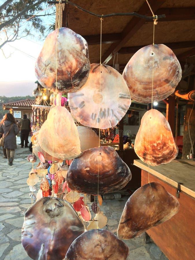 Dekoracyjne muszle morskie zdjęcie stock