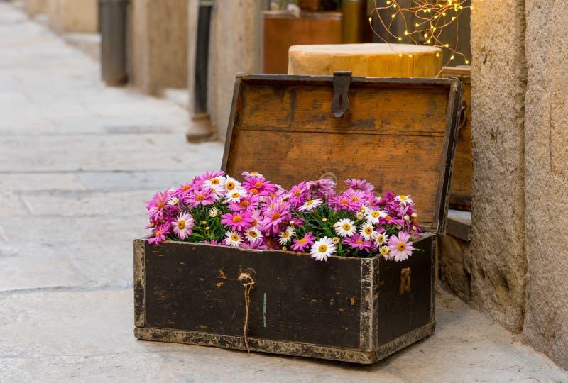 Dekoracyjni kwiaty w antykwarskiej drewnianej klatce piersiowej, plenerowa dekoracja obraz stock