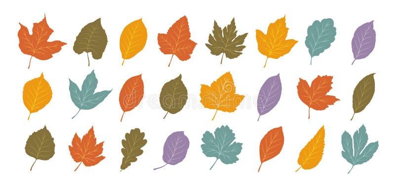 Dekoracyjni liście, set Jesień, liścia spadku pojęcie obcy kreskówki kota ucieczek ilustraci dachu wektor ilustracji